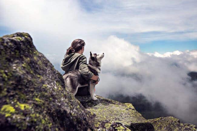 Un ragazzo che guarda dall'alto il panorama di montagna, con il suo cane vicino, il cane è un Siberian Husky